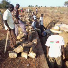 前進非洲系列報二:台非關係廿年之農業援助