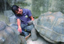Life as a zookeeper: more than just monkeying around!